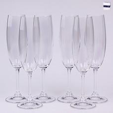 02B4G006210 Набор бокалов для шампанского 6 шт. 210 мл. Leona Прозрачный